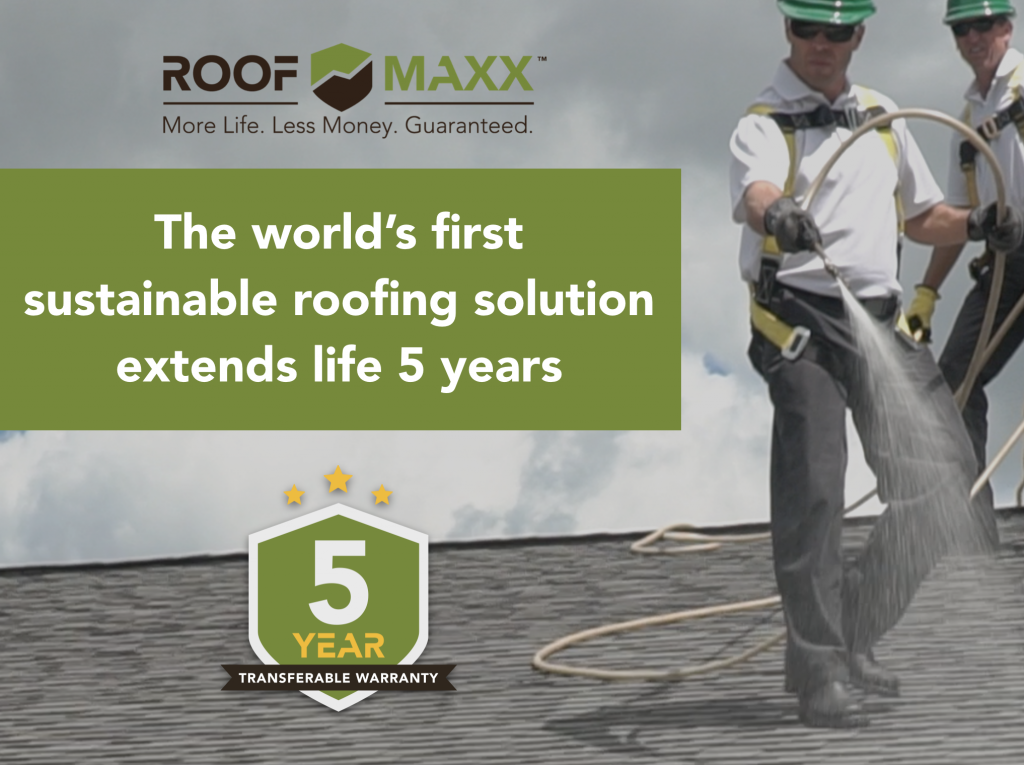 Sustainable_Roofing_Image
